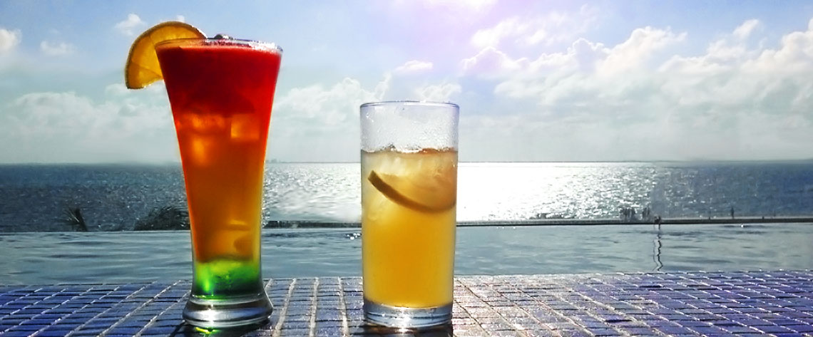 Home Florida Suncoast Travel Co